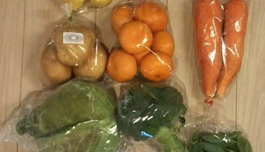 【ふるさと納税】長崎県松浦市から、野菜7種類を返礼品として貰いました!
