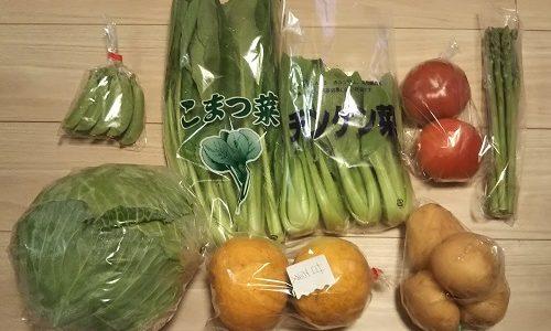 【ふるさと納税】長崎県松浦市から、野菜8種類を返礼品として貰いました!(2回目)