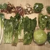 京都府亀岡市から京野菜をふるさと納税の返礼品として貰いました。