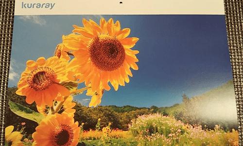 【1株優待】クラレの株主優待2021年のカレンダーが到着