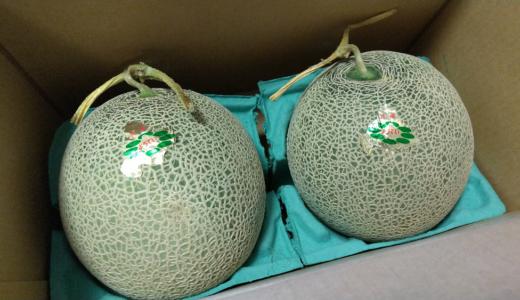 【10月優待】カナモトの株主優待で注文したメロンが到着!